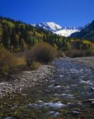 Autumn Colors, Flowing Water Of Castle Creek — Stock Photo