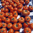 Stock Photo: Harvested Tomatoes