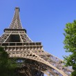 Eiffel Tower — Stock Photo #31707057