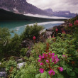 Stock Photo: Lower Waterfowl Lake, Banff National Park