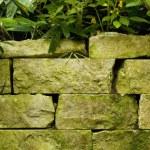 Stone Planter — Stock Photo