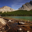 Stock Photo: Shoreline Of Mountain Lake