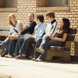 Stock Photo: Friends Talking On Bench