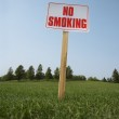 No Smoking Sign — Stock Photo #31708899