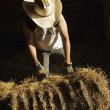 Man Moving A Bale Of Hay — Stock Photo #31709405