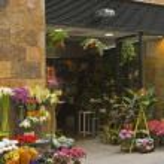 Flower Shop In Seville, Spain — Stock Photo