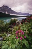 Lower Waterfowl Lake, Banff National Park — Stock Photo