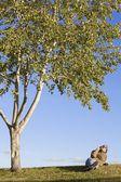 Man Resting Under Tree — Stock Photo