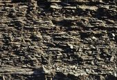 Siltstone And Shale Cliff — Foto de Stock