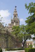 The Giralda, Seville, Spain — Stockfoto