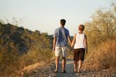 Couple Walking Down Path Hand-In-Hand — Fotografia Stock