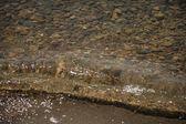 Průzračná voda — Stock fotografie
