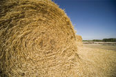 Bale Of Hay — Stockfoto