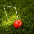 Stock Photo: Croquet Ball And Wicket