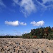 Rocky Beach — Stock Photo #31710511