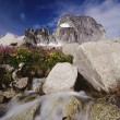 Bugaboo Glacier Provincial Park — Stock Photo