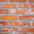 Brick Wall — Stock Photo #31712217