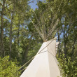Foto de Stock  : Tipi outdoor