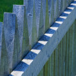 Picket Fence — Stock Photo #31712799