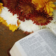 Flowers Beside Bible Open To Isaiah 6 — Stock Photo
