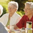 Group Of Seniors Together — Stock Photo #31713309