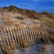 Stock Photo: Sand Dunes At Cape Cod