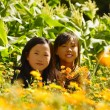Young Girls In Field — Stock Photo