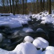 Winter Stream — Stock Photo #31714177