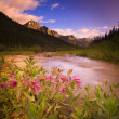 Stock Photo: Mountain River Scenic