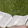 Stock Photo: Bible Lying On Grass