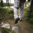 Stock Photo: Hiking Trail