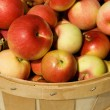 Stock Photo: Bushel Of Apples