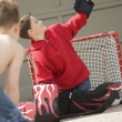 Stock Photo: Saved By Goalie