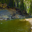 Fly Fishing In An Alberta River — Stock Photo