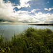 Stock Photo: Grassland By Water