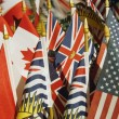 Collection Of Flags — Stock Photo #31717869