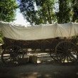 Large Covered Wagon — Stockfoto #31718257