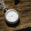 Pocket Watch — Stock Photo #31718345