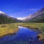 Rockies Provincial Park, British Columbia, Canada — Stock Photo #31719245