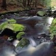 A Rushing Brook — Stock Photo
