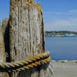 Stock Photo: Post And Shoreline