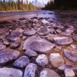 Rocky Riverbed — Stock Photo #31719803