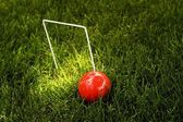 Croquet Ball And Wicket — Stock Photo