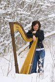 Harpist In The Snow — Stock Photo