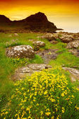 County Antrim, Ireland, Landscape Near Portballintrae — Stock Photo