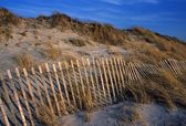 Sand Dunes At Cape Cod — Stock Photo