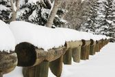 Snow Piled On Log Fence — Stock Photo