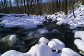 Winter Stream — Stockfoto
