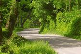 Scenic Road In Northern Ireland — Stock Photo