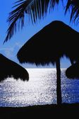 Tropical Palm Hut Silhouettes — Stock Photo